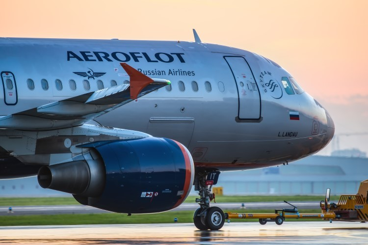 Aeroflot pigeon delays flight